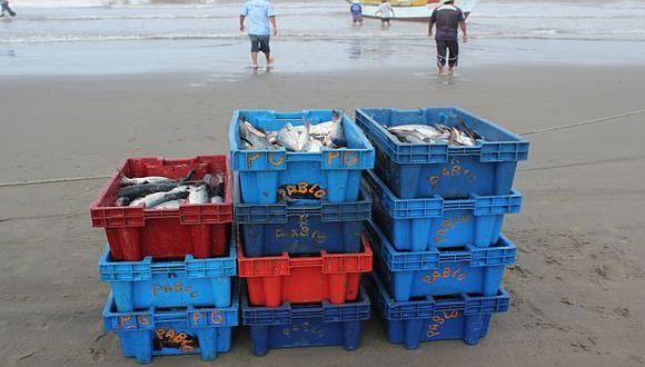 Incremento de la Temperatura Superficial del Mar favoreció pesca de bonito, caballa y perico. (Fabiola Valle)