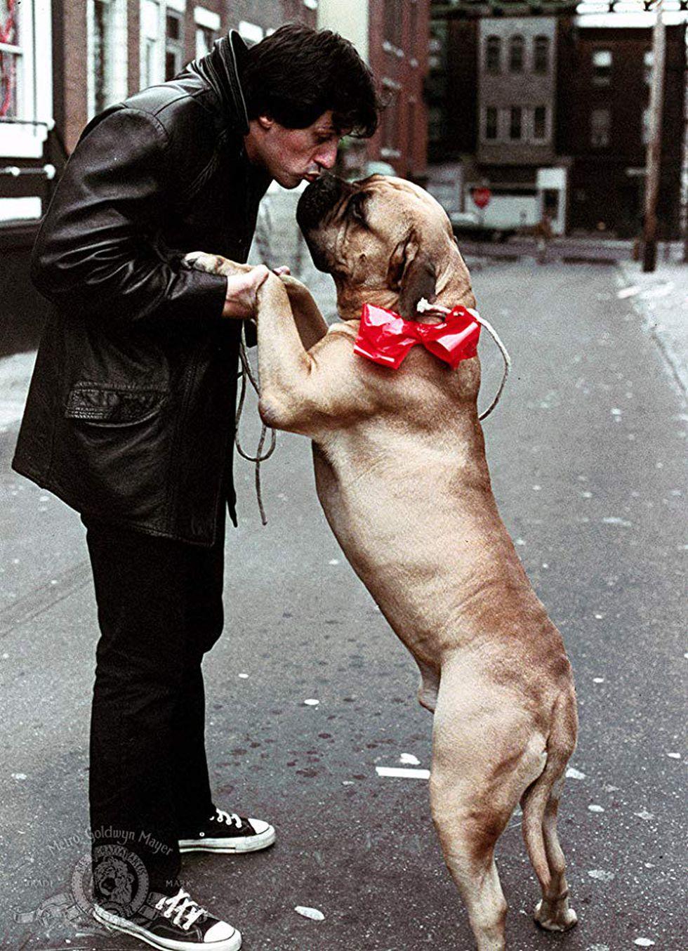 Sylvester Stallone y Butkus Stallone, el perro que vendió por no poder alimentarlo y que luego recuperó (Foto: Metro-Goldwyn-Mayer Studios Inc.)