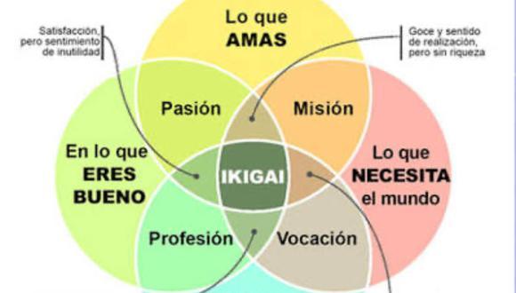 Ikigai: Tu razón de ser.