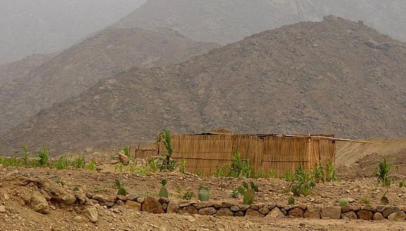 Los invasores han ocupado zonas protegidas. (Andina)