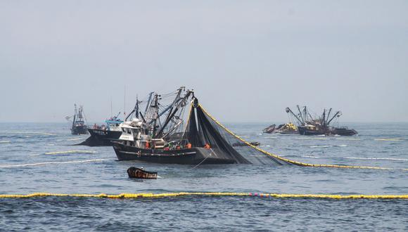 Imarpe se encuentra elaborando las investigaciones científicas correspondientes, a fin de medir la cuota de la primera temporada de pesca. (Foto: Difusión)