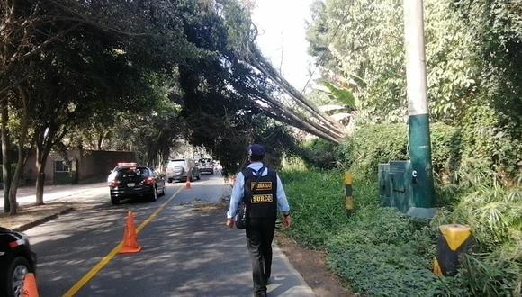 Por precaución, en el lugar estuvo presente una unidad de la Brigada de Rescate del distrito. (Surco)