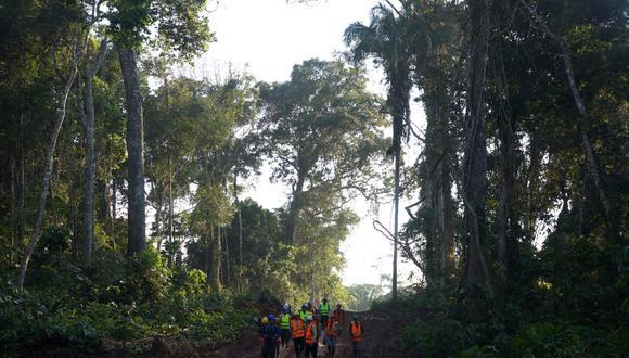 Madre de Dios: El Consejo Regional de Madre de Dios aprobó la creación de su primera Unidad de Gestión Forestal y de Fauna Silvestre (UGFFS) en la zona de Tahuamanu.