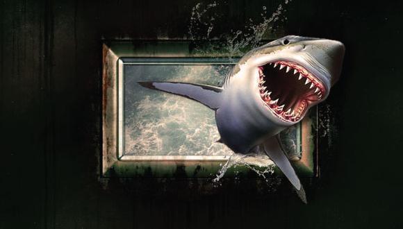 Los ataques mortales de tiburones son raros. (Pixabay)