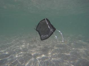 México: ONG encuentra mascarillas en las aguas de Cancún