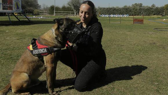 Perros entrenados para proteger a víctimas de violencia de género.