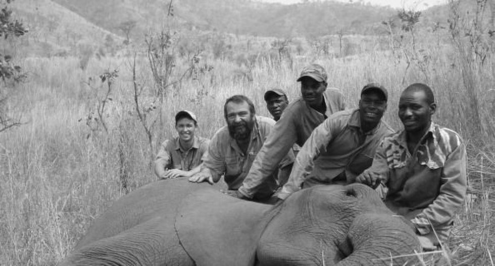 Caza de elefantes (Getty)