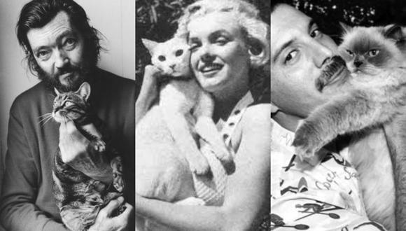 ¡Feliz Día del Gato! ¿Por qué se celebra hasta en cuatro ocasiones?