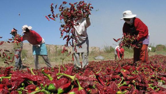 Expectativa. Juan Varilias indicó que las agroexportaciones sí pueden alcanzar el objetivo. (Perú21)