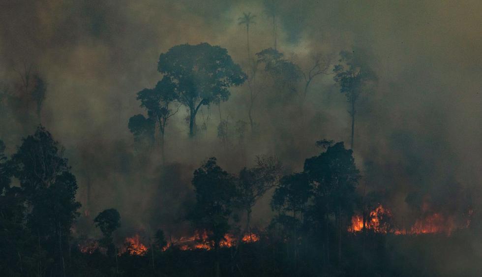 La Amazonía bajo presión de sequías, especulación y políticas públicas. (Foto: AFP)