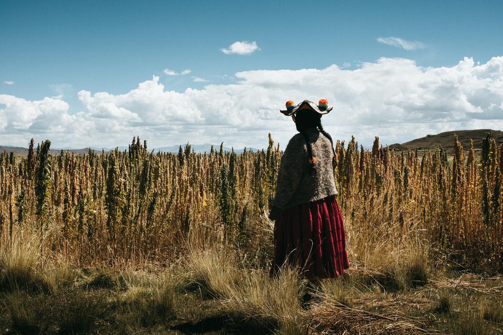 'Sembradoras de vida' fue filmada en localidades de Cusco y Puno (Difusión).
