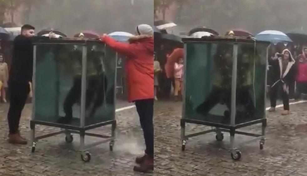 Un mago le quiso hacer un homenaje a Houdini y casi se muere.(YouTube   Galiciaé Xornal Galego)