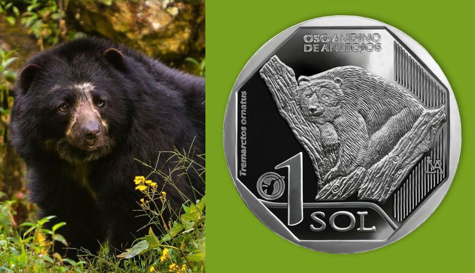 FOTO 1 | La primera moneda se acuñó en alusión al oso andino de anteojos. (Fuente: BCR)
