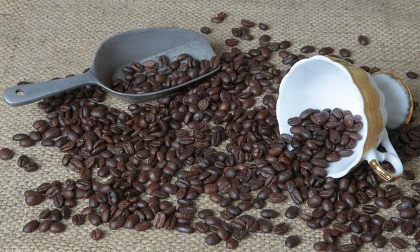 Gremio destaca las oportunidades que tiene el café peruano en Asia. (Foto: GEC)