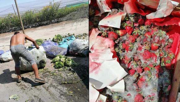 Ica: Cargamentos de verduras y frutas se llenan de hongos en quinto día de paro agrario   FOTOS