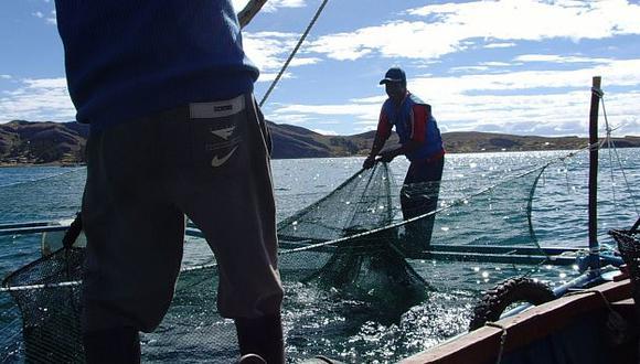 Adex asegura que acuicultura tiene mucho potencial. (Andina)