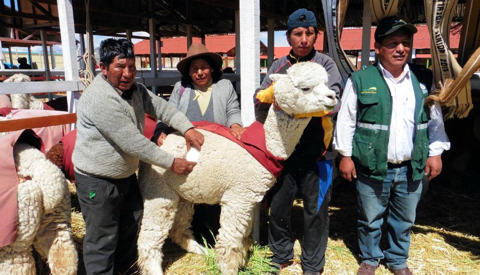 Una buena noticia para los peruanos. (DIfusión)