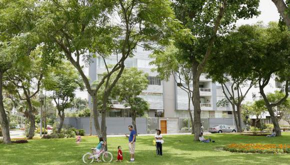 Planificarán distribución de las áreas verdes. (USI)
