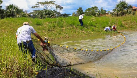 Al haberse derogado la Ley de Promoción Agraria también se eliminan los beneficios de los que gozaba la acuicultura. (Foto: Produce)