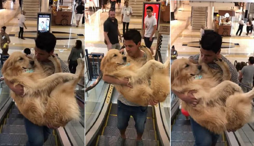 El perro fue llevado al segundo nivel de un centro comercial cargado 'como si fuera un bebé'. (YouTube: Viralhog)