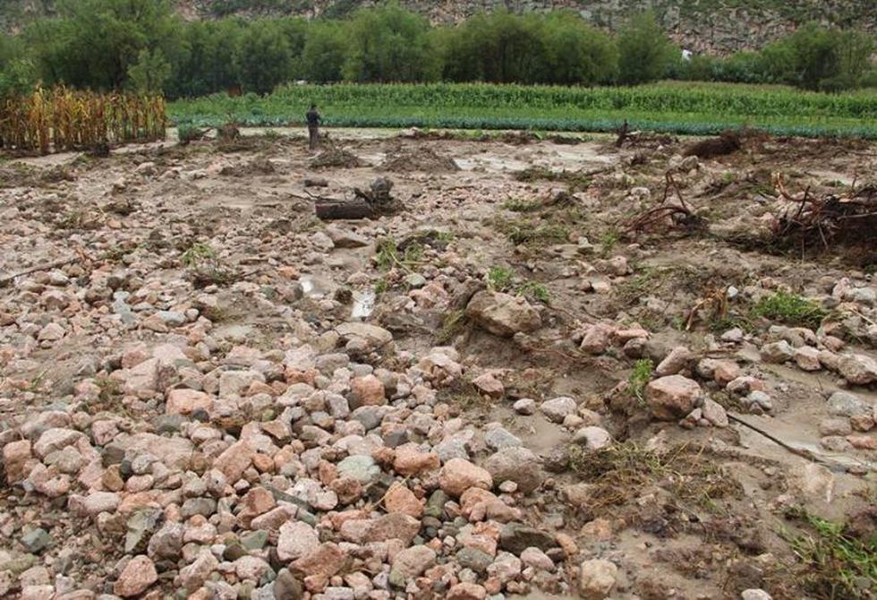 Cultivo quedó enterrado tras la crecida del río Seco Totorita. (Foto: Municipalidad Distrital de Jesús Nazareno)