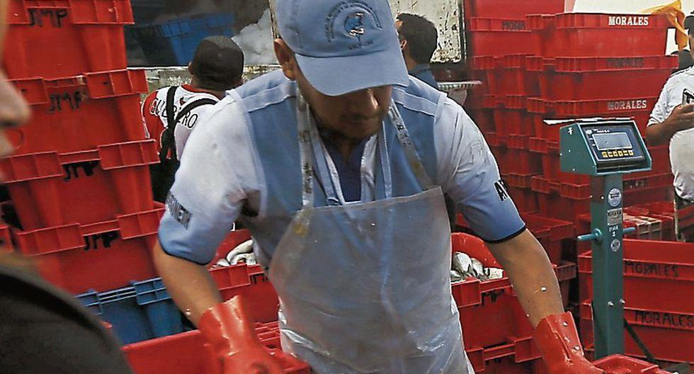 Es más barato que otras carnes. (LuisCenturión/Perú21)