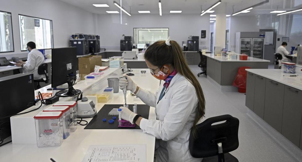 Nueve directores de empresas que desarrollan potenciales vacunas contra el coronavirus prometen rigor científico. (Foto referencial: JUAN MABROMATA / AFP)