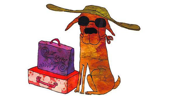 Ojo: Los hospedajes deben contar con veterinarios y especialistas en tratamiento de la conducta animal.