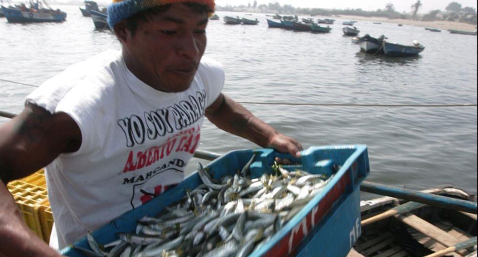 lndustriales pescarán más. (USI)