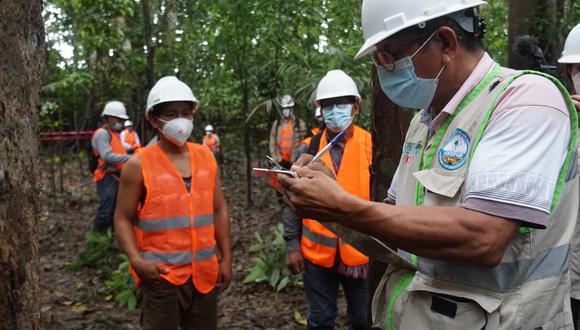 El MEF destina una partida adicional superior a los 17 millones de soles para reactivar sector forestal de las regiones amazónicas de Ucayali, Loreto y Madre de Dios.