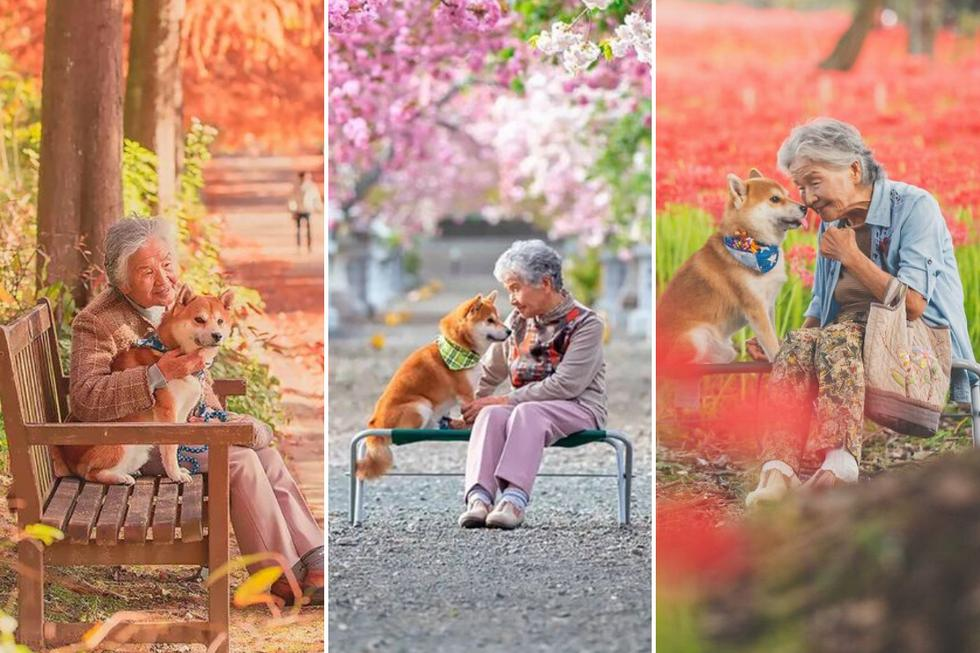 Una adorable anciana con su leal perro de raza Shiba Inu se robaron los corazones de todos en las redes sociales con su enternecedora sesión fotográfica. (Foto: yasuto.photography en Instagram)