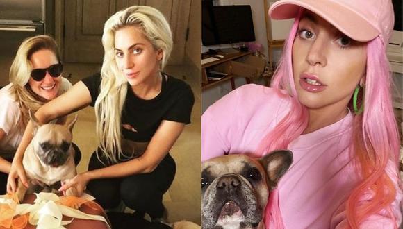 El paseador del perro de Lady Gaga fue secuestrado por un hombre desconocido. (Foto: @ladygaga)