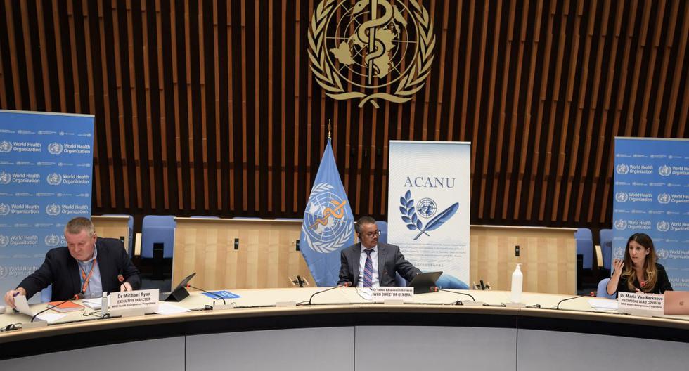 """Imagen referencial. La OMS subraya que la peste es """"rara"""" y que por lo general se encuentra en ciertas regiones del mundo donde aún es endémica. Conferencia organizada por la Asociación de Corresponsales de las Naciones Unidas de Ginebra (ACANU). (AFP / POOL / Fabrice COFFRINI)."""