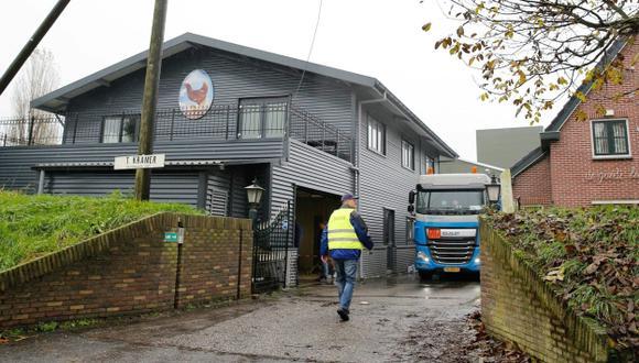 Confirman brote de gripe aviar en Ámsterdam, Holanda. (EFE)
