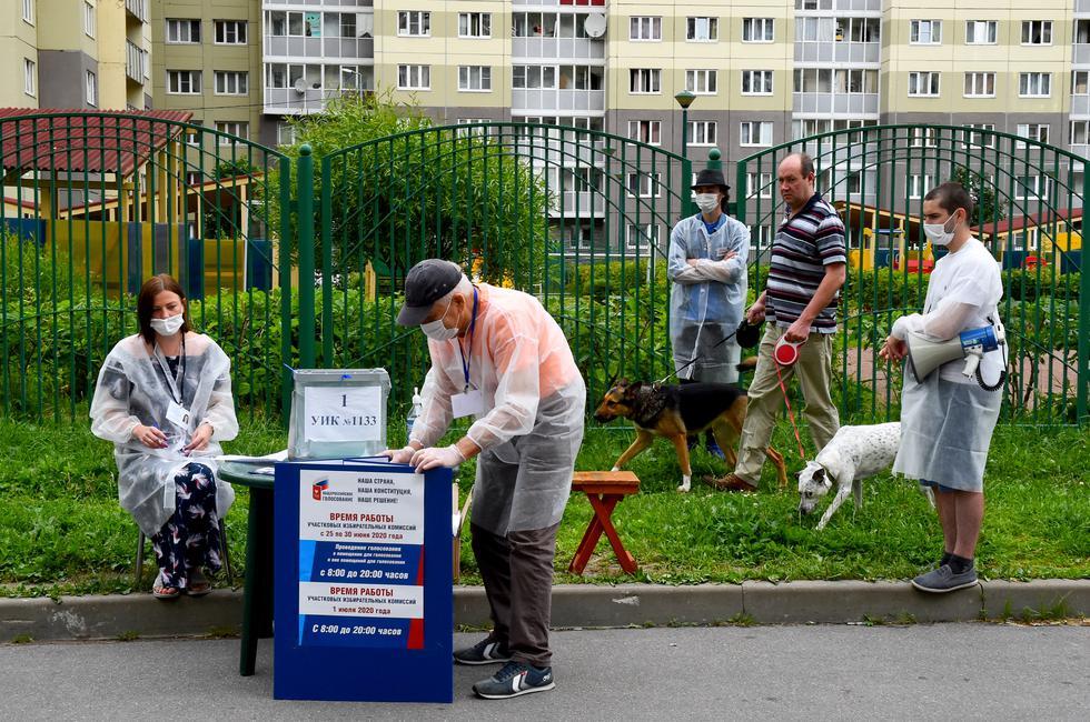 Un hombre pasea perros mientras los miembros de una comisión electoral local con máscaras faciales esperan a los residentes locales en una mesa de votación al aire libre en San Petersburgo. (Foto: OLGA MALTSEVA / AFP)