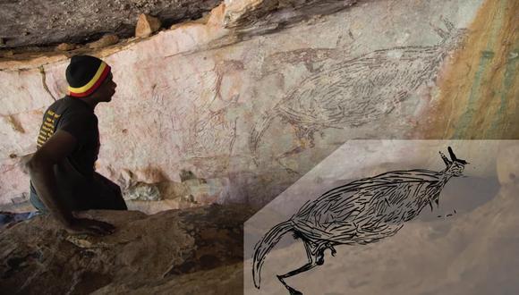 La pintura del canguro se extiende por el techo de un refugio de rocas y mide 2 metros, que es aproximadamente la altura de un canguro moderno.(Foto: Damien Finch/Illustration Pauline Heaney)