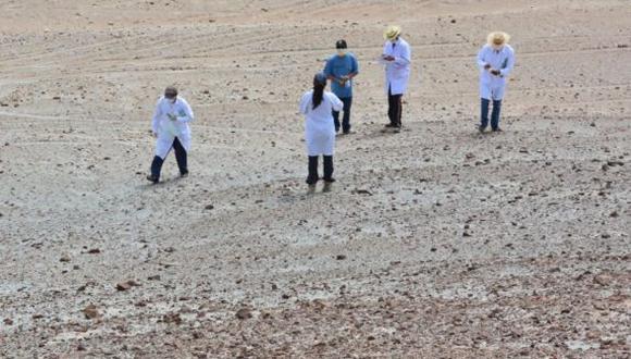 Científicos trabajan en el desierto La Joya en Arequipa. (Saúl Pérez)