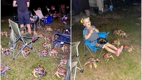 La familia Luetich acampaba en la Isla de Navidad (Australia), cuando varias decenas de cangrejos carnívoros interrumpieron su reunión atraídos por el olor de la comida. (Foto: Facebook / Christmas Island Tourism)
