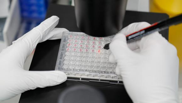 Científicos británicos alertan de que el coronavirus permanecerá muchos años. (REUTERS/Anton Vaganov).