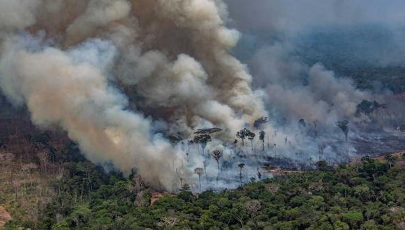 Donald Trump aplaudió la gestión del presidente Bolsonaro en la crisis de los incendios. En la foto, imagen aérea de Greenpeace que muestra uno de los focos de incendio en Rondonia. (Foto: AFP)