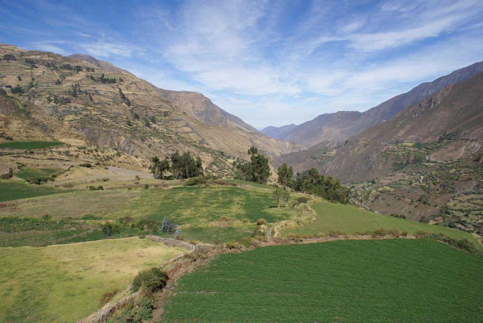 Los campos verdes y la tranquilidad de la zona son las características principales de Canta y Obrajillo. (Foto: PromPerú)