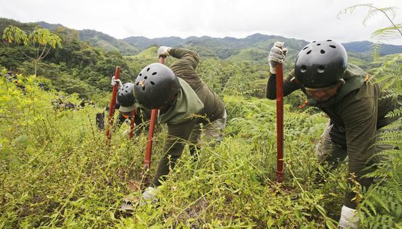El presidente Martín Vizcarra señaló que desde este año el CORAH entrará al VRAEM a erradicar cultivos ilegales de hoja de coca. (Imagen referencial/GEC)