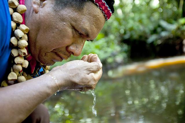 En las Cuencas Sagradas nacen las afluentes principales del río Amazonas y son parte esencial para mantener al bosque Amazónico con vida