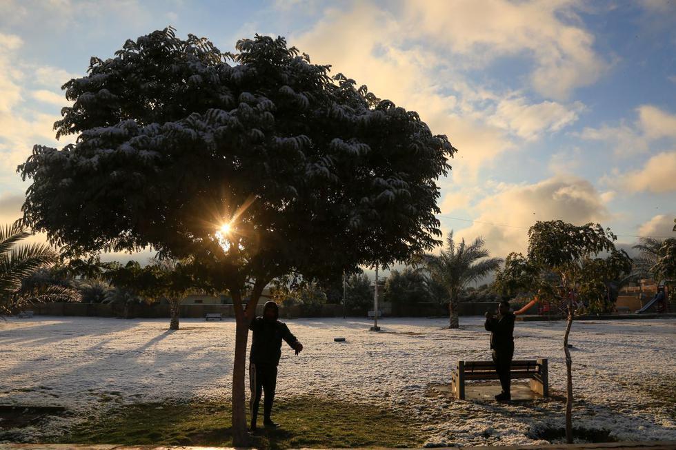 Dos iraquíes sacuden la nieve de un árbol en un parque en la ciudad sagrada chiíta de Kerbala. (AFP)