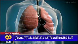 ¿Cómo afecta el coronavirus al sistema cardiovascular?