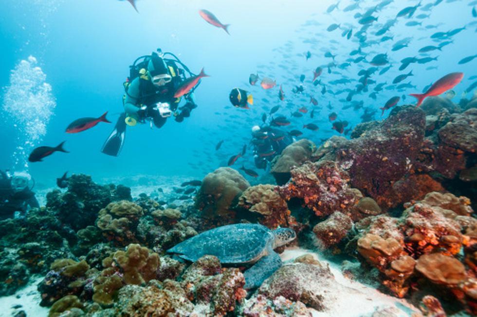 Unesco amplió la reserva de la biósfera de las islas Galápagos. (Getty)