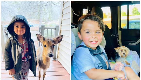 Dominic se fue de paseo por el bosque y volvió a casa con un nuevo amigo. (Foto: Facebook | Stephanie Brown)