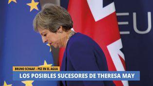 Los posibles sucesores de Theresa May