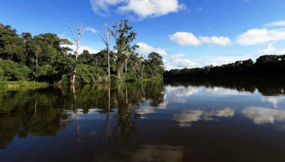 Se necesita conservar la Amazonía. (Vía Andina)