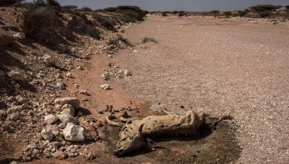 Somalia sufre una de las peores sequías de su historia (Getty Images)